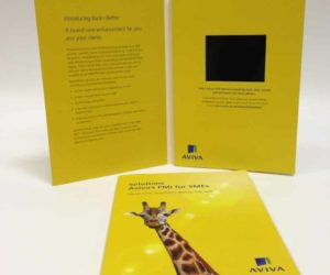 Aviva Video Brochure
